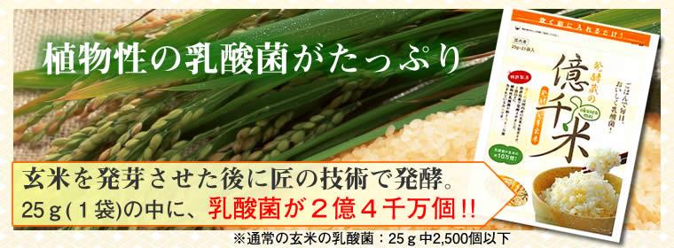 発酵発芽玄米「億千米」植物性乳酸菌が2億4千万個!